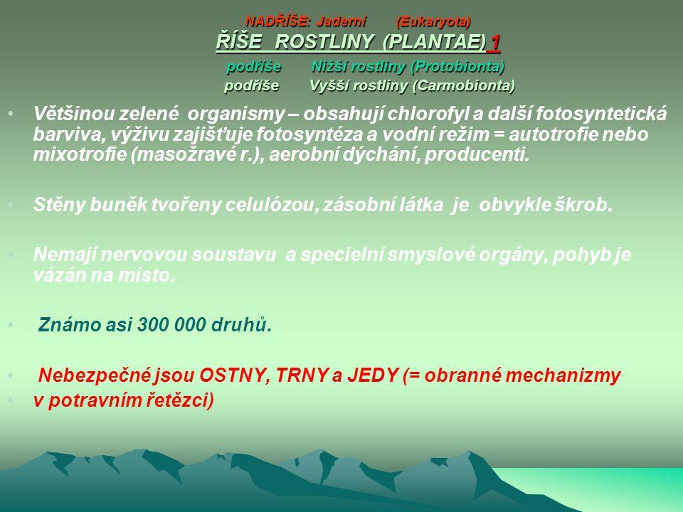 NADŘÍŠE: Jaderní (Eukaryota) ŘÍŠE ROSTLINY (PLANTAE) 1 podříše Nižší rostliny (Protobionta) podříše Vyšší rostliny (Carmobionta)