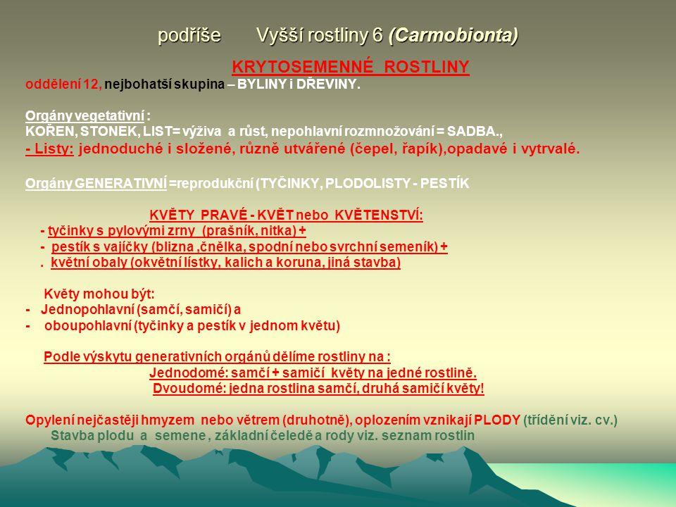 podříše Vyšší rostliny 6 (Carmobionta)