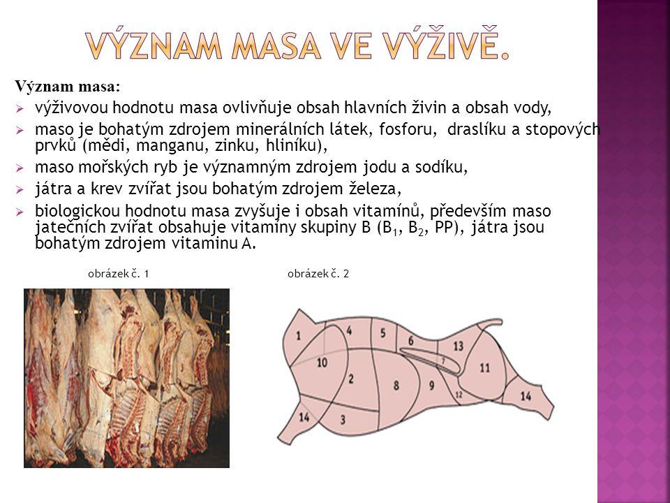 Význam masa ve výživě. Význam masa: