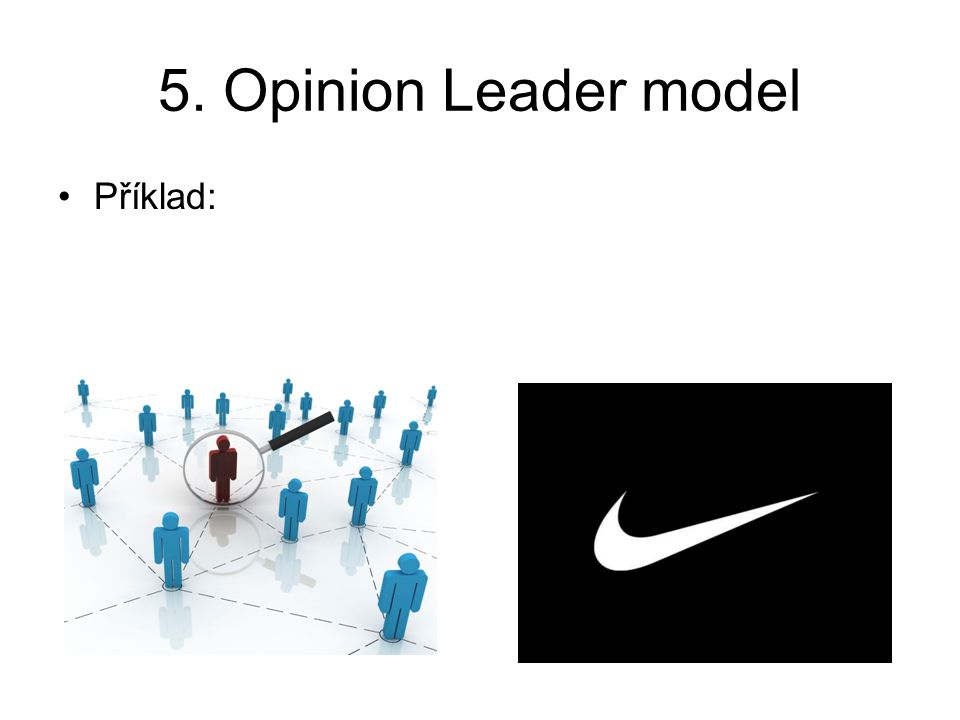 5. Opinion Leader model Příklad: