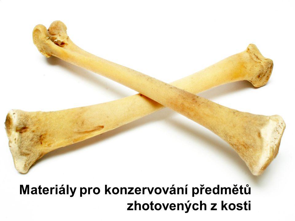 Materiály pro konzervování předmětů zhotovených z kosti