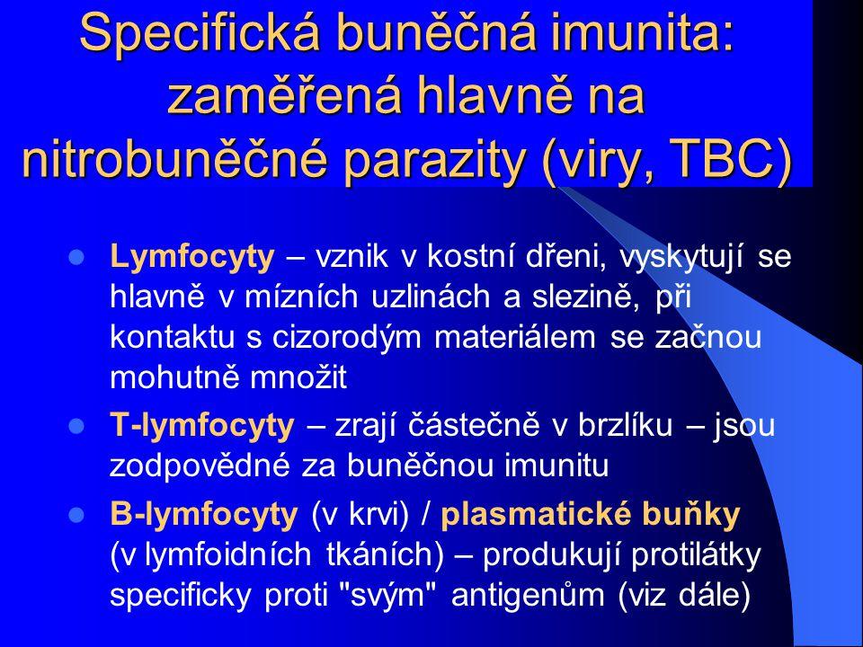 Specifická buněčná imunita: zaměřená hlavně na nitrobuněčné parazity (viry, TBC)