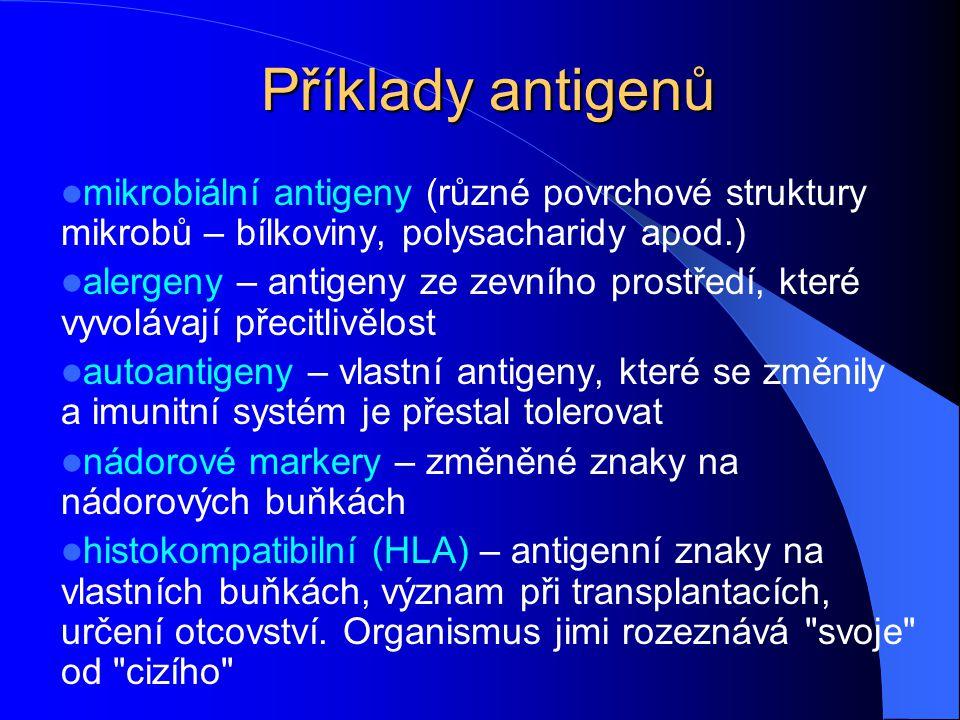 Příklady antigenů mikrobiální antigeny (různé povrchové struktury mikrobů – bílkoviny, polysacharidy apod.)
