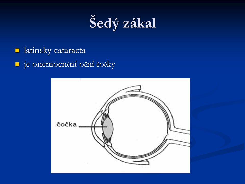 Šedý zákal latinsky cataracta je onemocnění oční čočky
