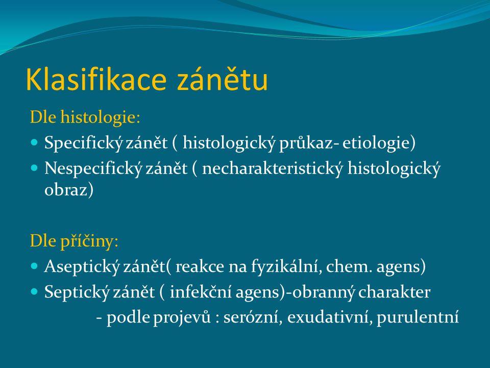 Klasifikace zánětu Dle histologie: