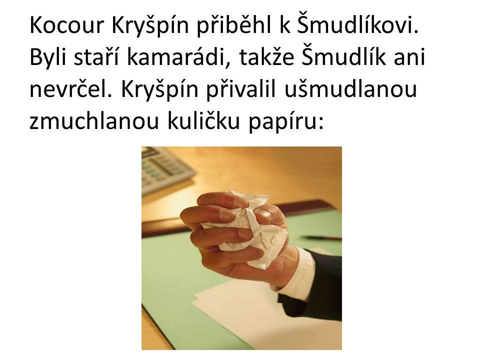 Kocour Kryšpín přiběhl k Šmudlíkovi