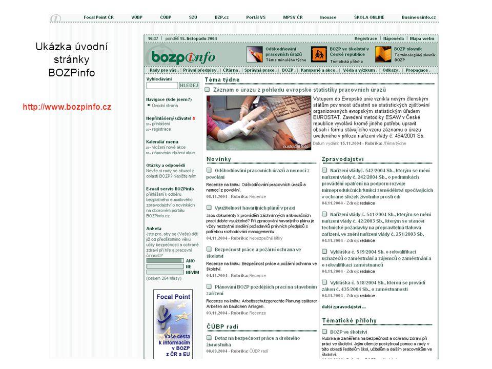 Ukázka úvodní stránky BOZPinfo