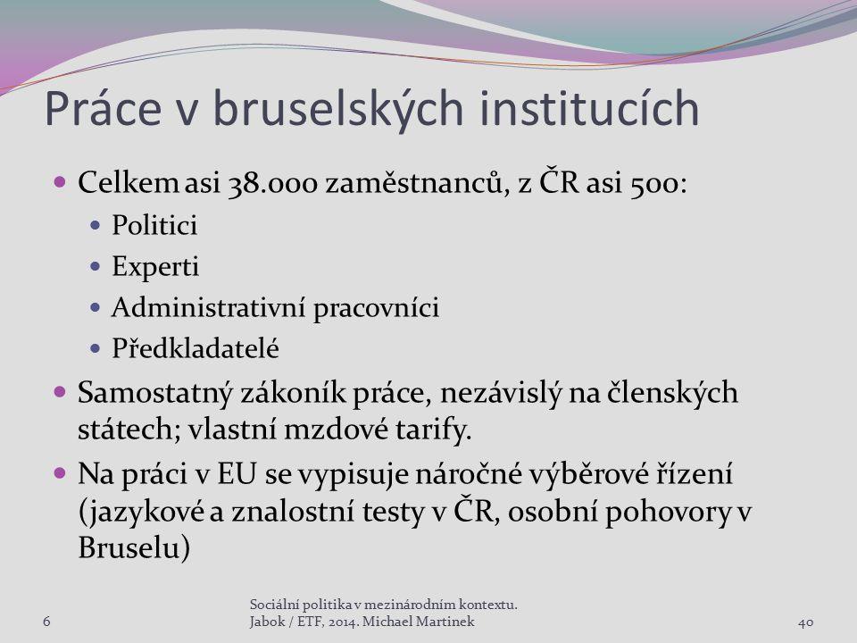Práce v bruselských institucích