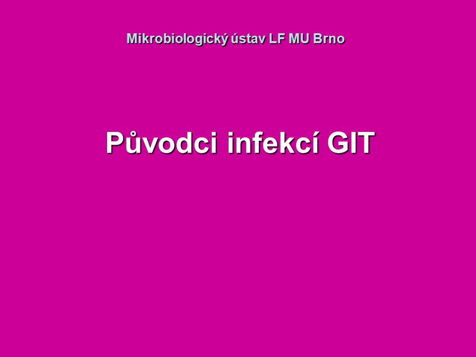 Mikrobiologický ústav LF MU Brno