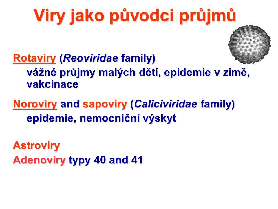 Viry jako původci průjmů
