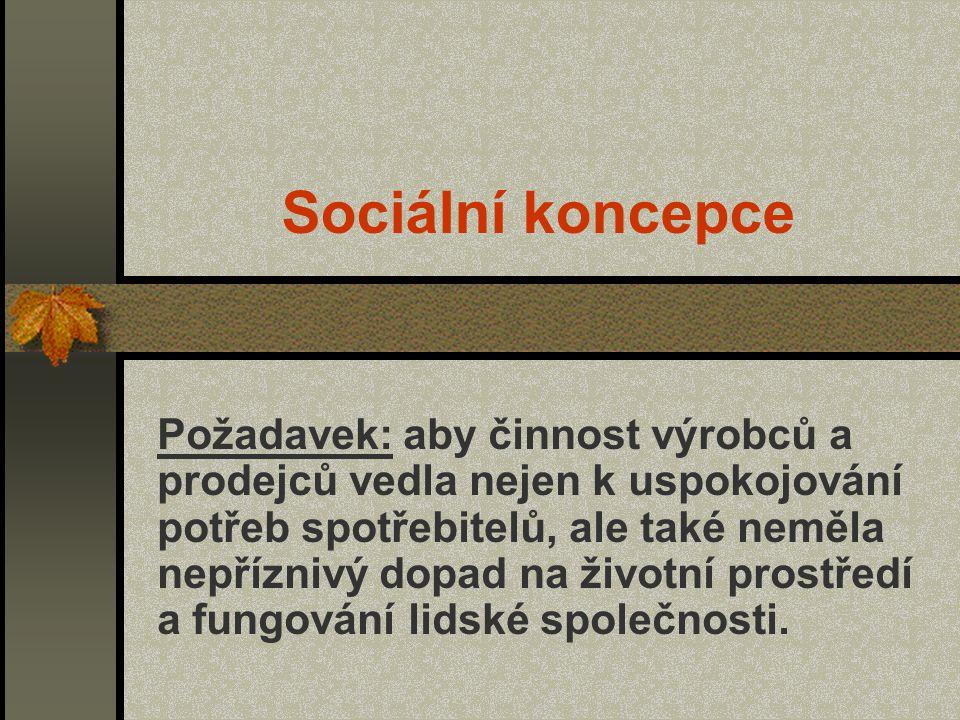 Sociální koncepce