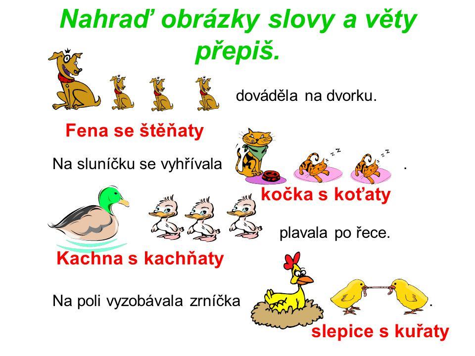 Nahraď obrázky slovy a věty přepiš.