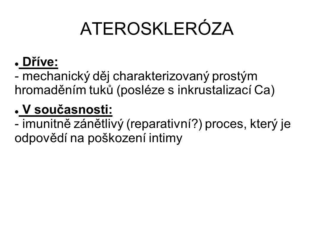 ATEROSKLERÓZA Dříve: - mechanický děj charakterizovaný prostým hromaděním tuků (posléze s inkrustalizací Ca)
