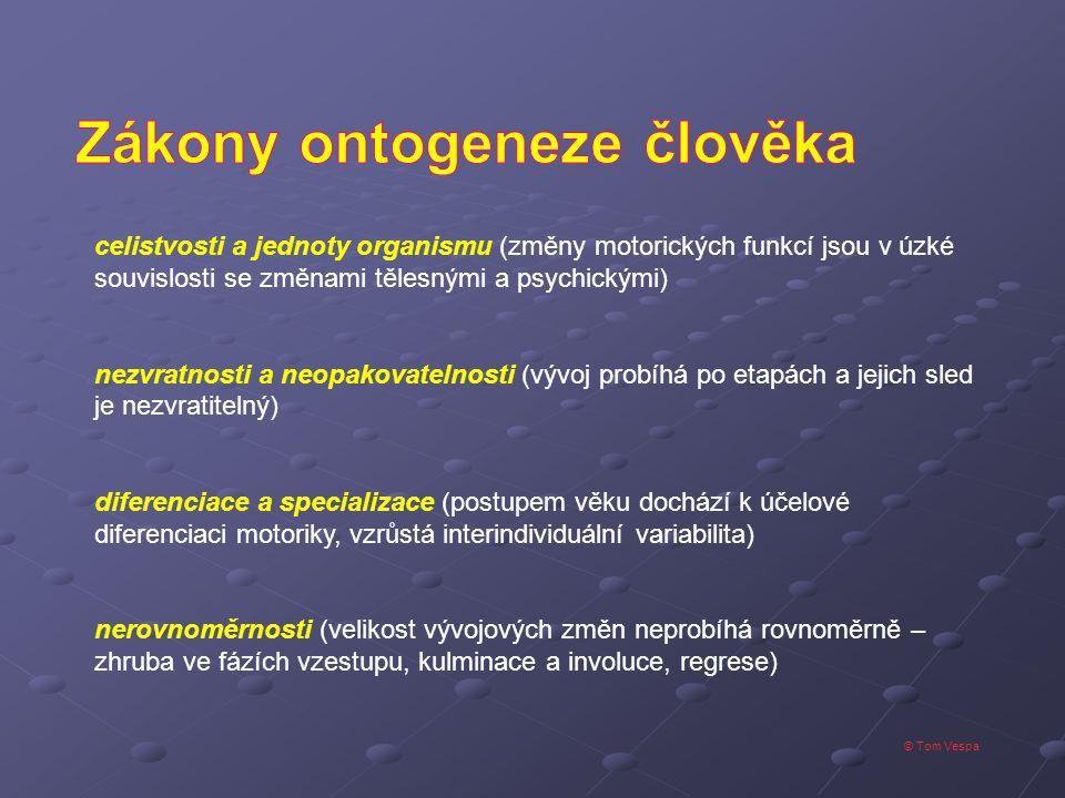 Zákony ontogeneze člověka