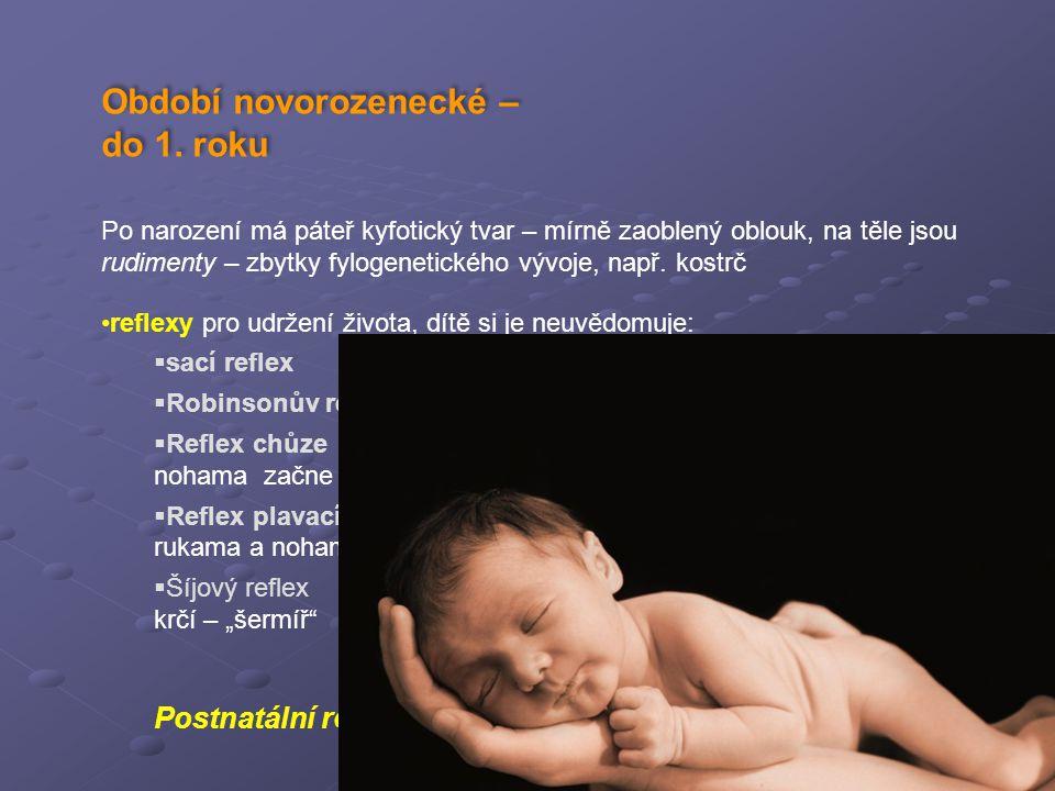 Období novorozenecké – do 1. roku