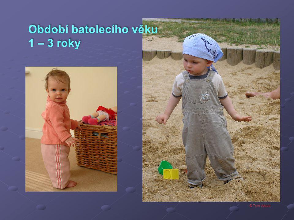 Období batolecího věku 1 – 3 roky