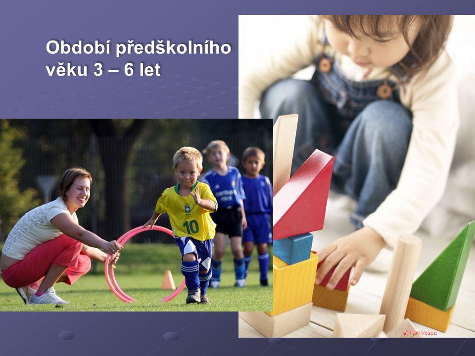 Období předškolního věku 3 – 6 let