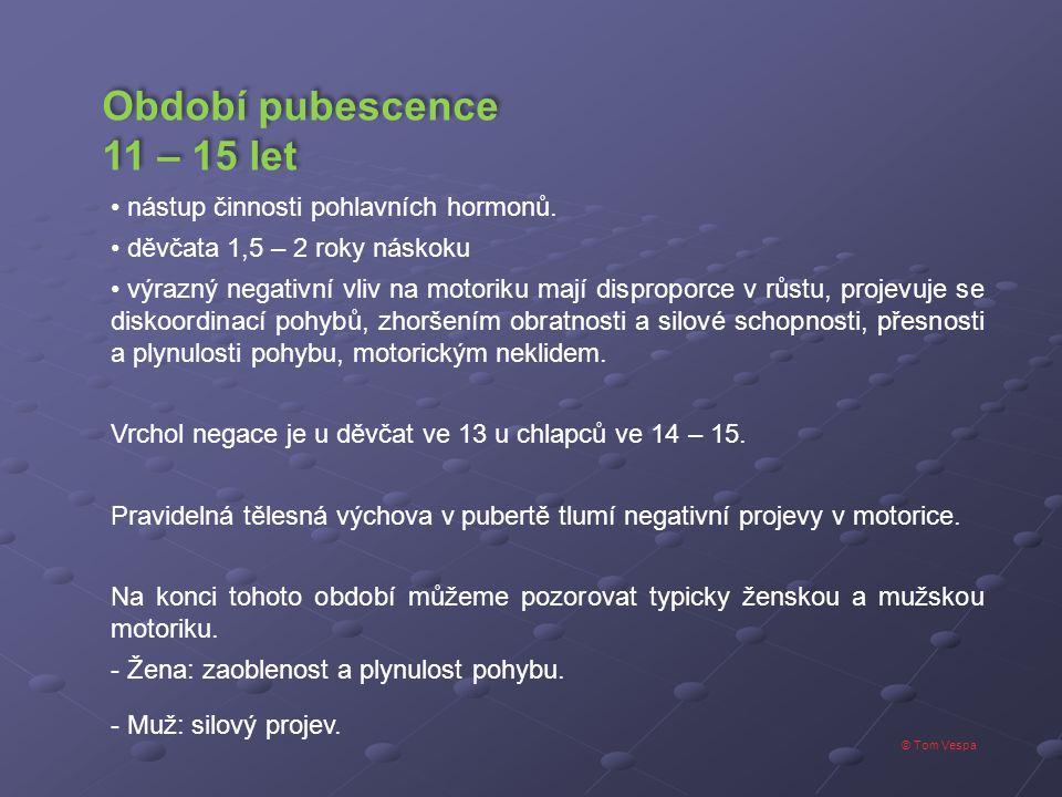 Období pubescence 11 – 15 let nástup činnosti pohlavních hormonů.