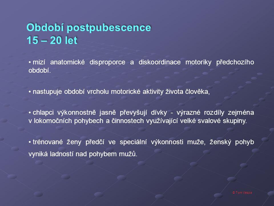 Období postpubescence 15 – 20 let