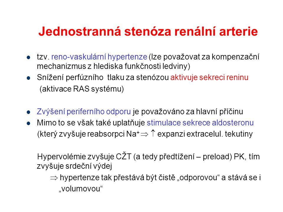 Jednostranná stenóza renální arterie