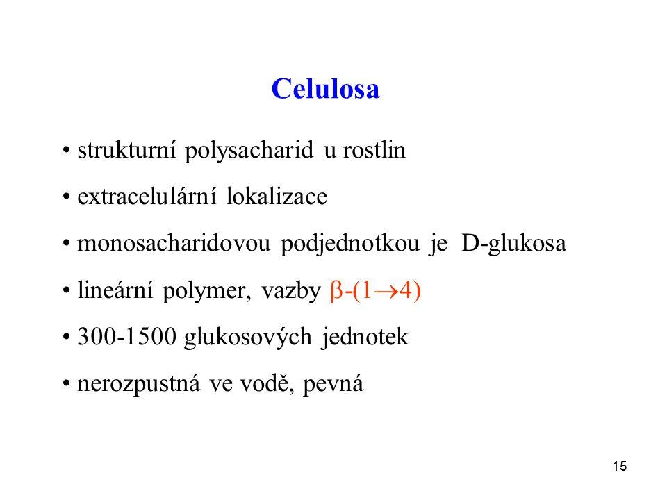 Celulosa strukturní polysacharid u rostlin extracelulární lokalizace