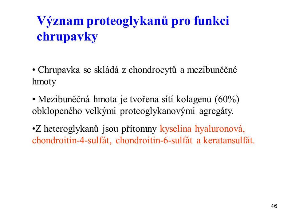 Význam proteoglykanů pro funkci chrupavky