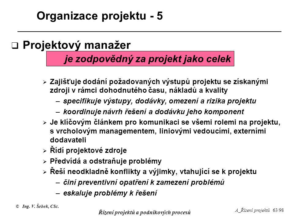 Organizace projektu - 5 Projektový manažer