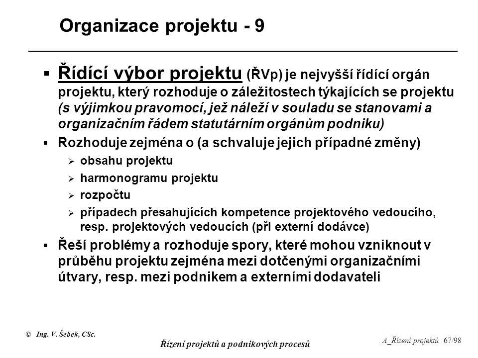 Organizace projektu - 9