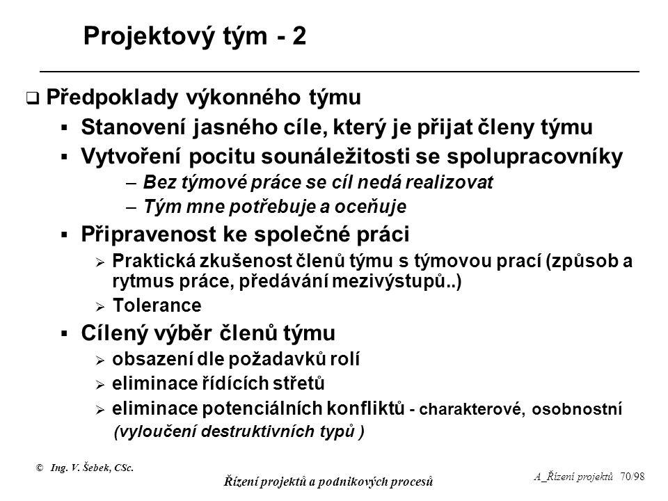 Projektový tým - 2 Předpoklady výkonného týmu