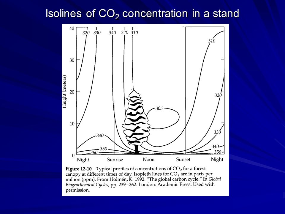Isolines of CO2 concentration in a stand