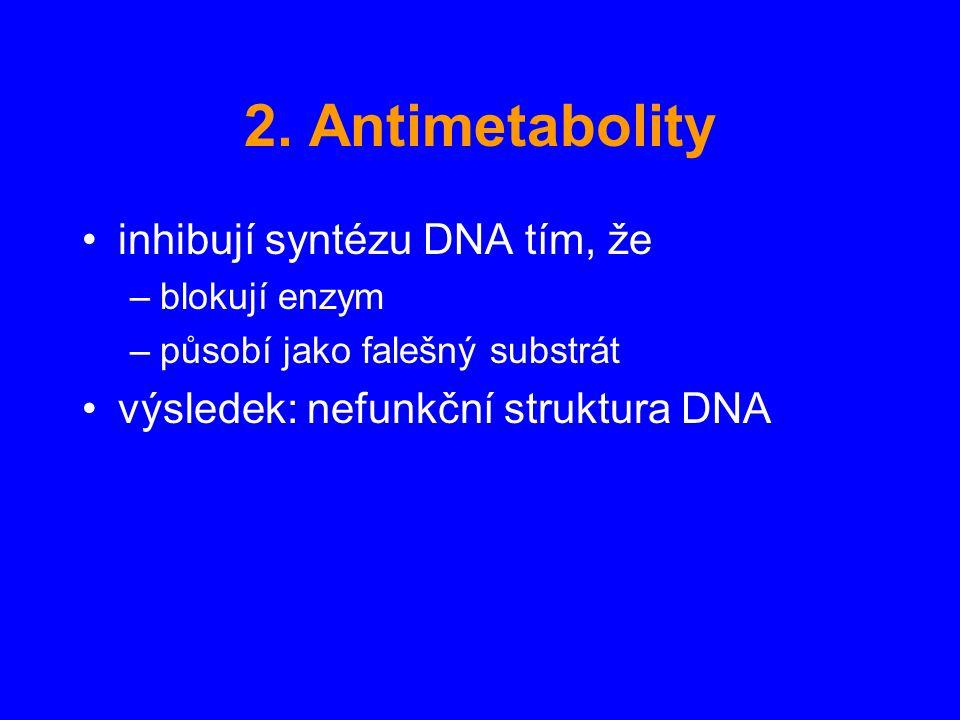 2. Antimetabolity inhibují syntézu DNA tím, že