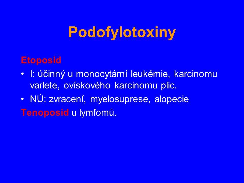 Podofylotoxiny Etoposid