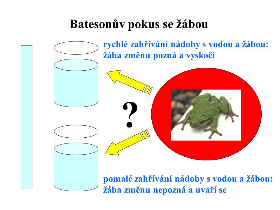 Batesonův pokus se žábou