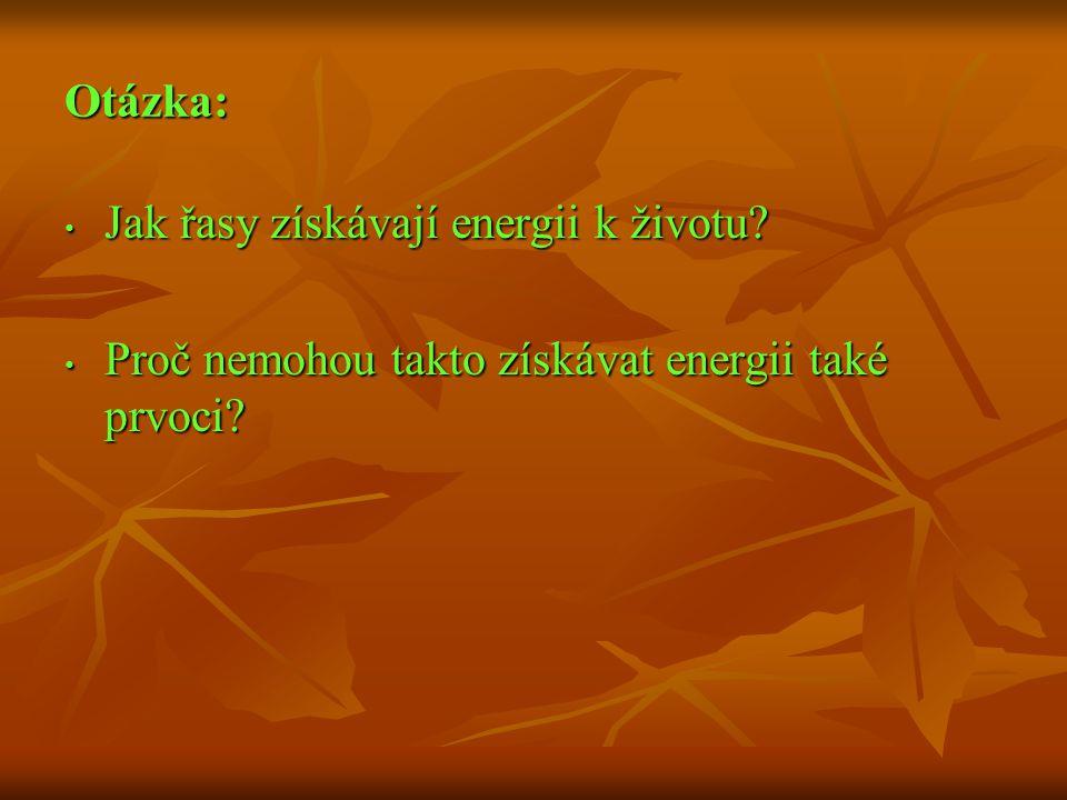 Otázka: Jak řasy získávají energii k životu Proč nemohou takto získávat energii také prvoci