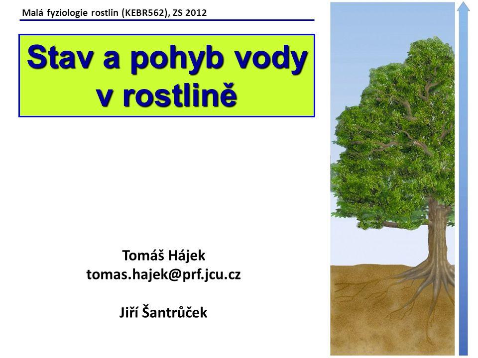 Stav a pohyb vody v rostlině Tomáš Hájek tomas.hajek@prf.jcu.cz
