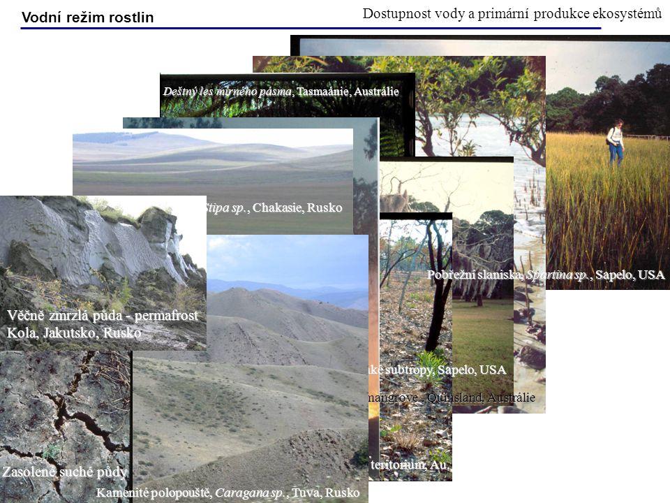 Dostupnost vody a primární produkce ekosystémů