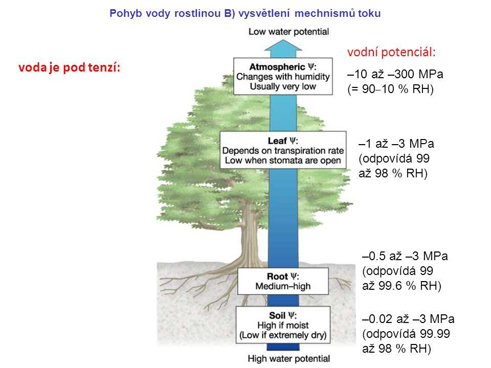 vodní potenciál: voda je pod tenzí: –10 až –300 MPa (= 90–10 % RH)