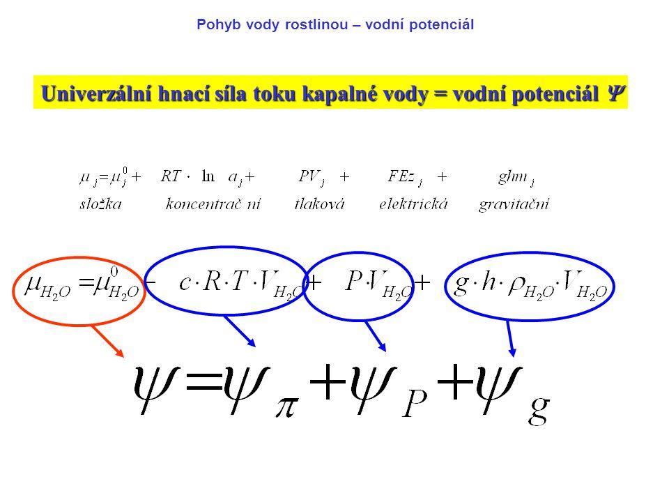 Univerzální hnací síla toku kapalné vody = vodní potenciál 