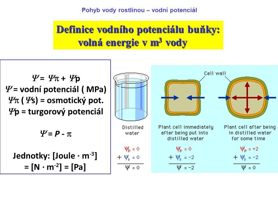 Definice vodního potenciálu buňky: volná energie v m3 vody