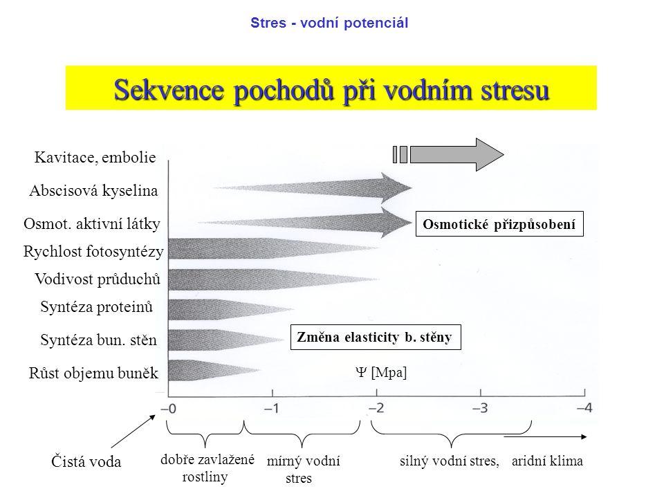 Sekvence pochodů při vodním stresu