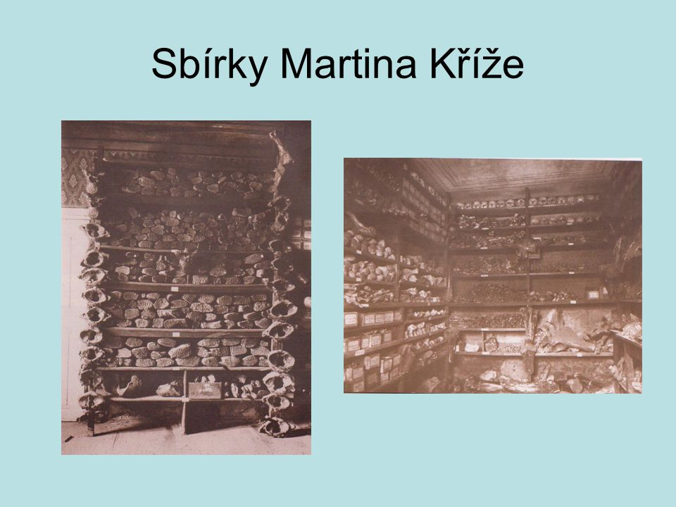 Sbírky Martina Kříže