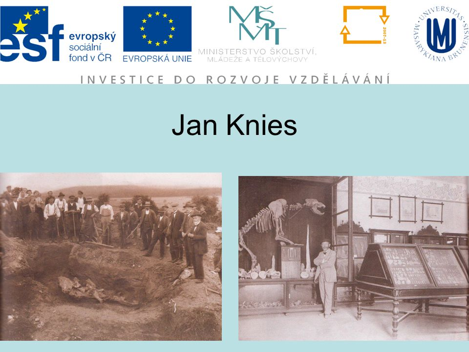 Jan Knies
