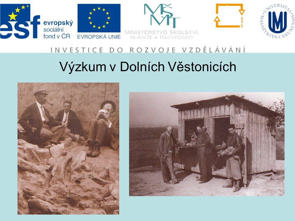 Výzkum v Dolních Věstonicích