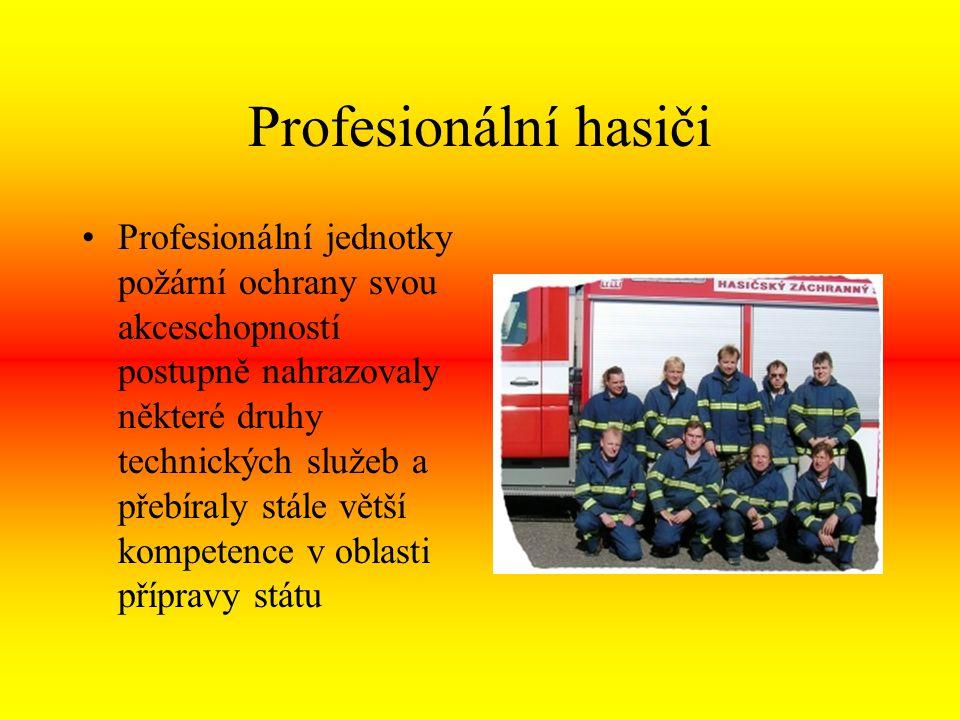 Profesionální hasiči