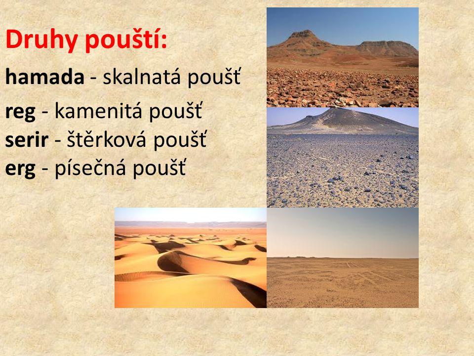 Druhy pouští: hamada - skalnatá poušť