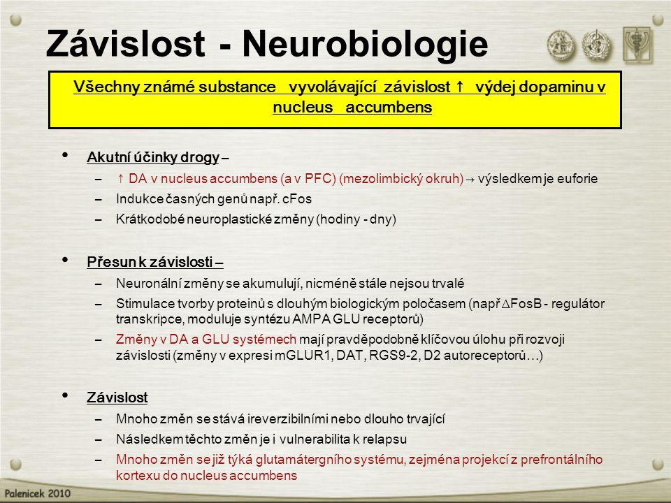 Závislost - Neurobiologie
