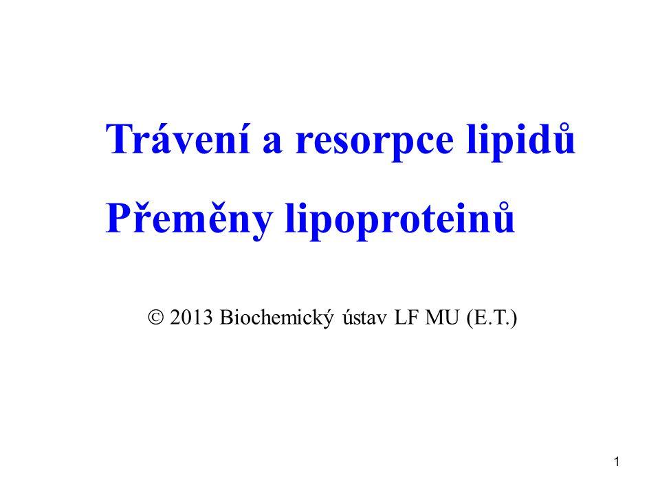  2013 Biochemický ústav LF MU (E.T.)