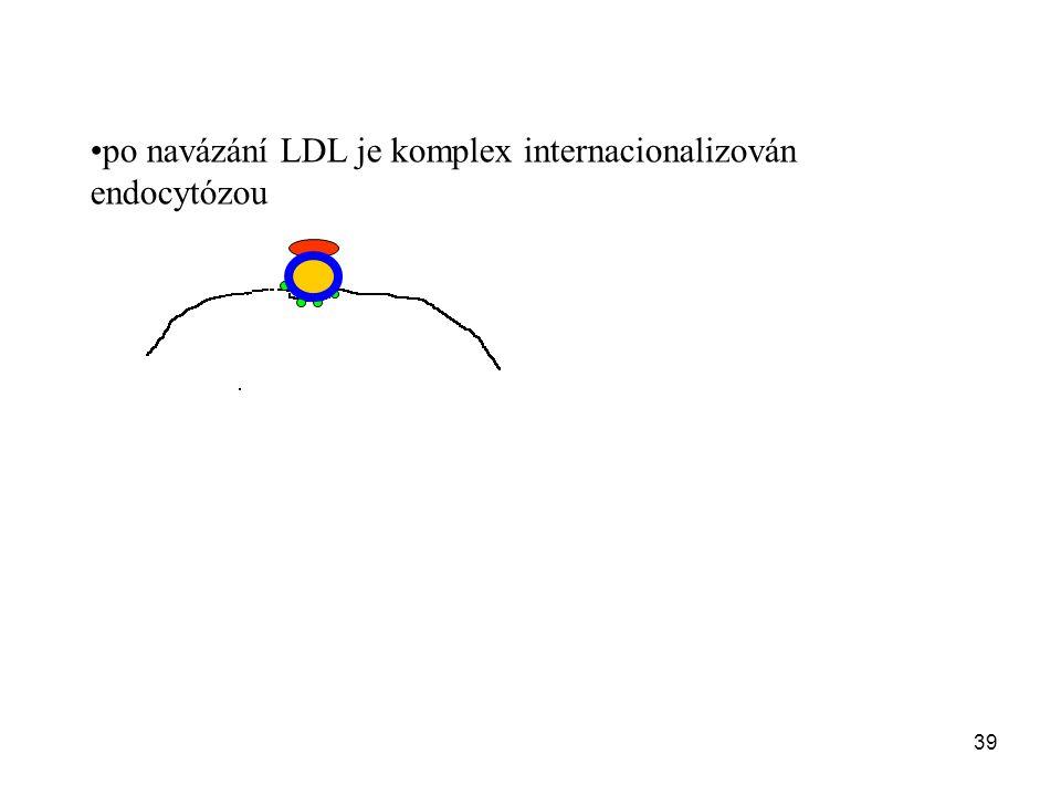 po navázání LDL je komplex internacionalizován endocytózou