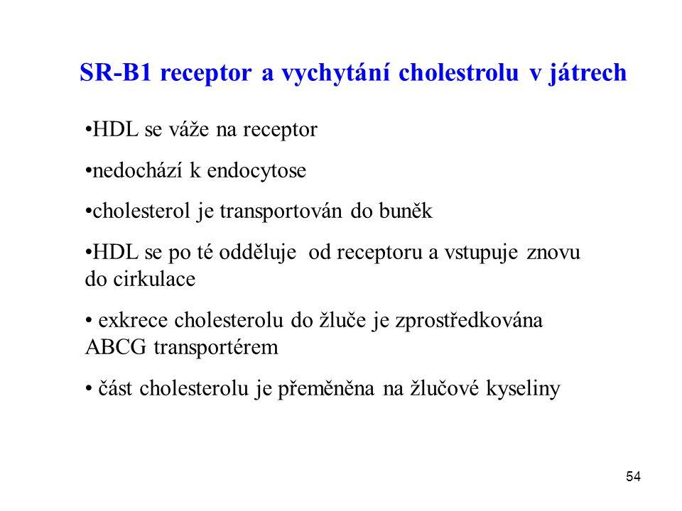 SR-B1 receptor a vychytání cholestrolu v játrech