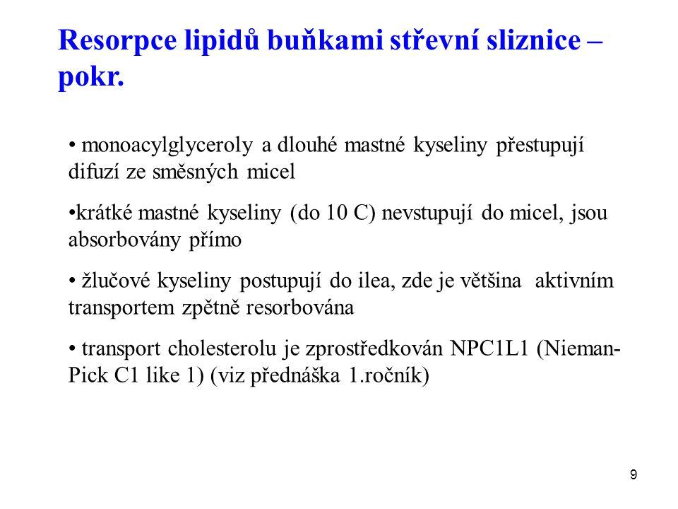 Resorpce lipidů buňkami střevní sliznice – pokr.